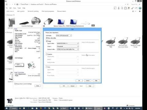 Configure Epson 7890 9890 Using Conde Photo With Windows